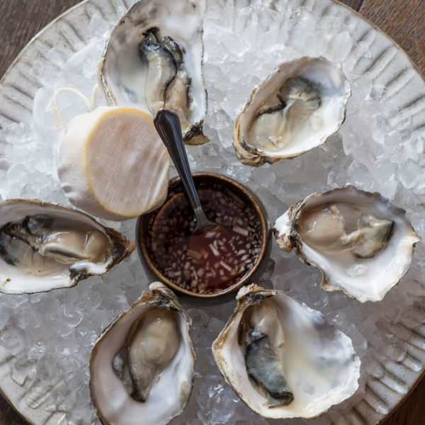 Oysters at DINE
